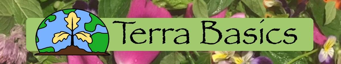 Terra Basics Logo
